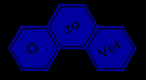 logo-inclinato-trasparente-rettangolare